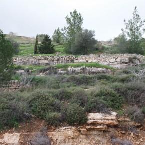 Highway 395 Israel Terraces