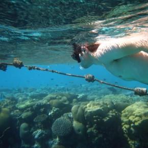 Vic Chudnovsky Snorkeling Eilat Israel