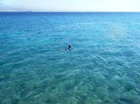 Swimming in Gulf of Aqaba