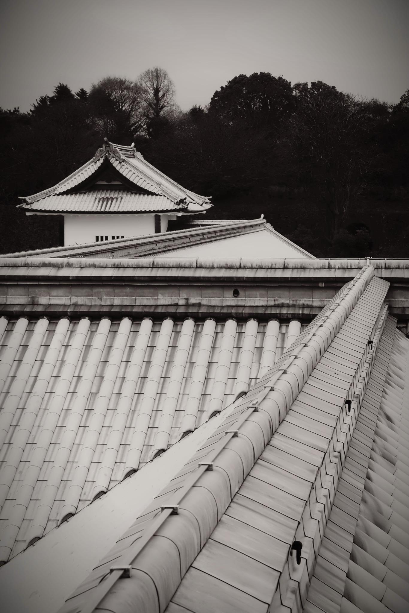 Lead Roof at Kanazawa Castle
