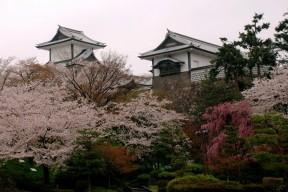 Spring at Kanazawa Castle