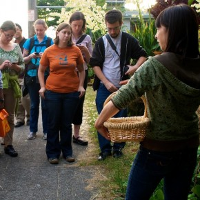 Central District Foraging Tour
