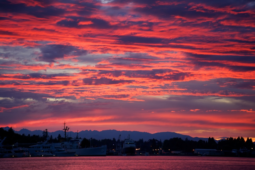 Salmon Bay Sunset
