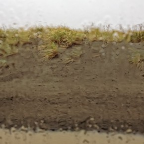 Rainy Day Ocean Shores