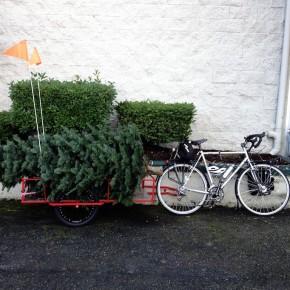 Bike Trailer by Haulin' Colin: Yes!