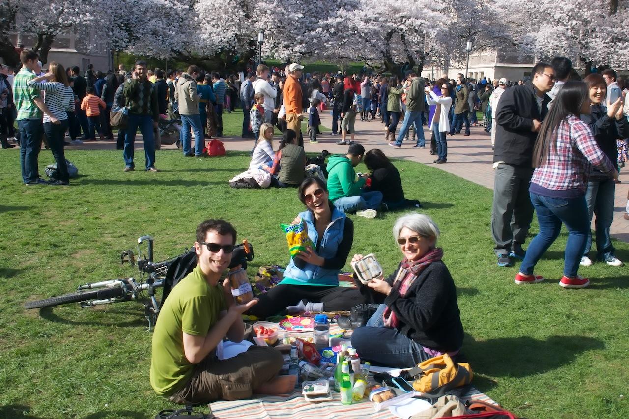 Picnic at Cherry Blossoms