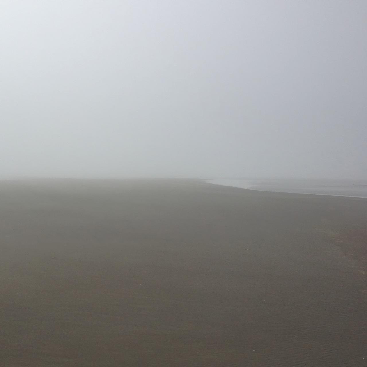 Grayland WA beach