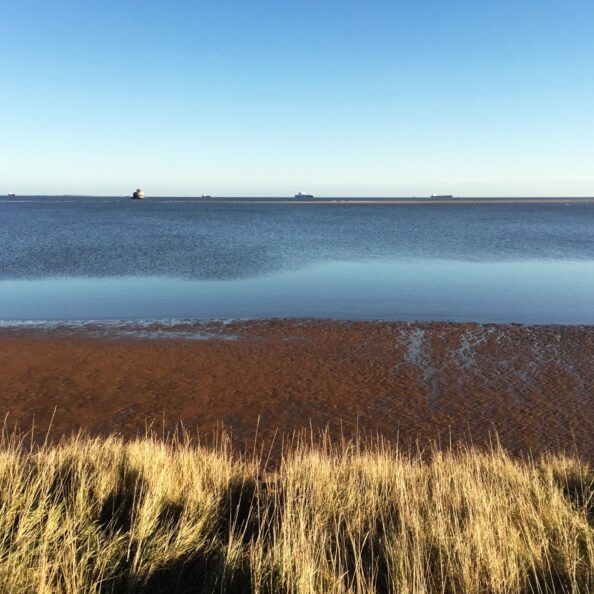 Today we took a nice long walk along the mouth of the Humber