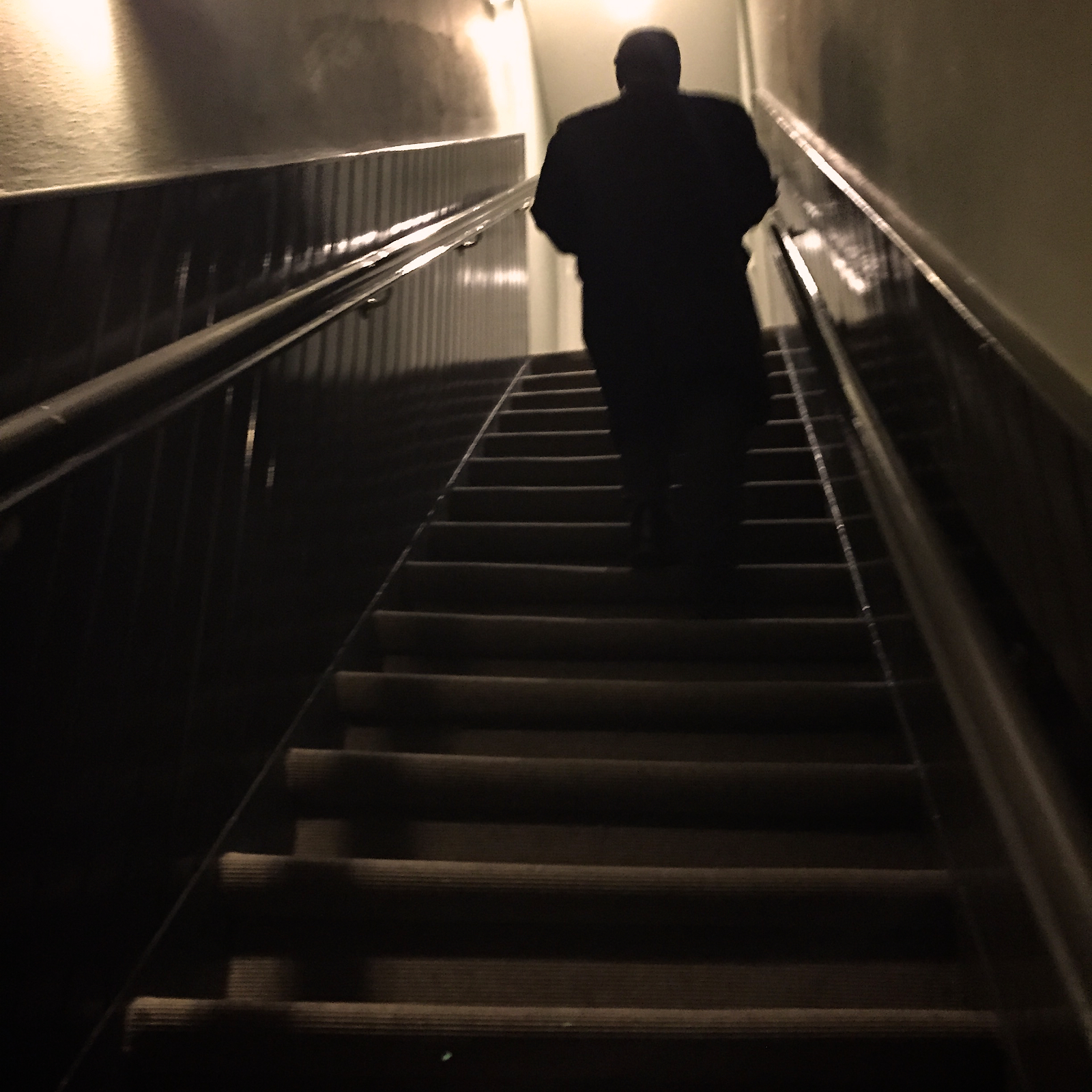 I would not want to attempt these stairs drunk.