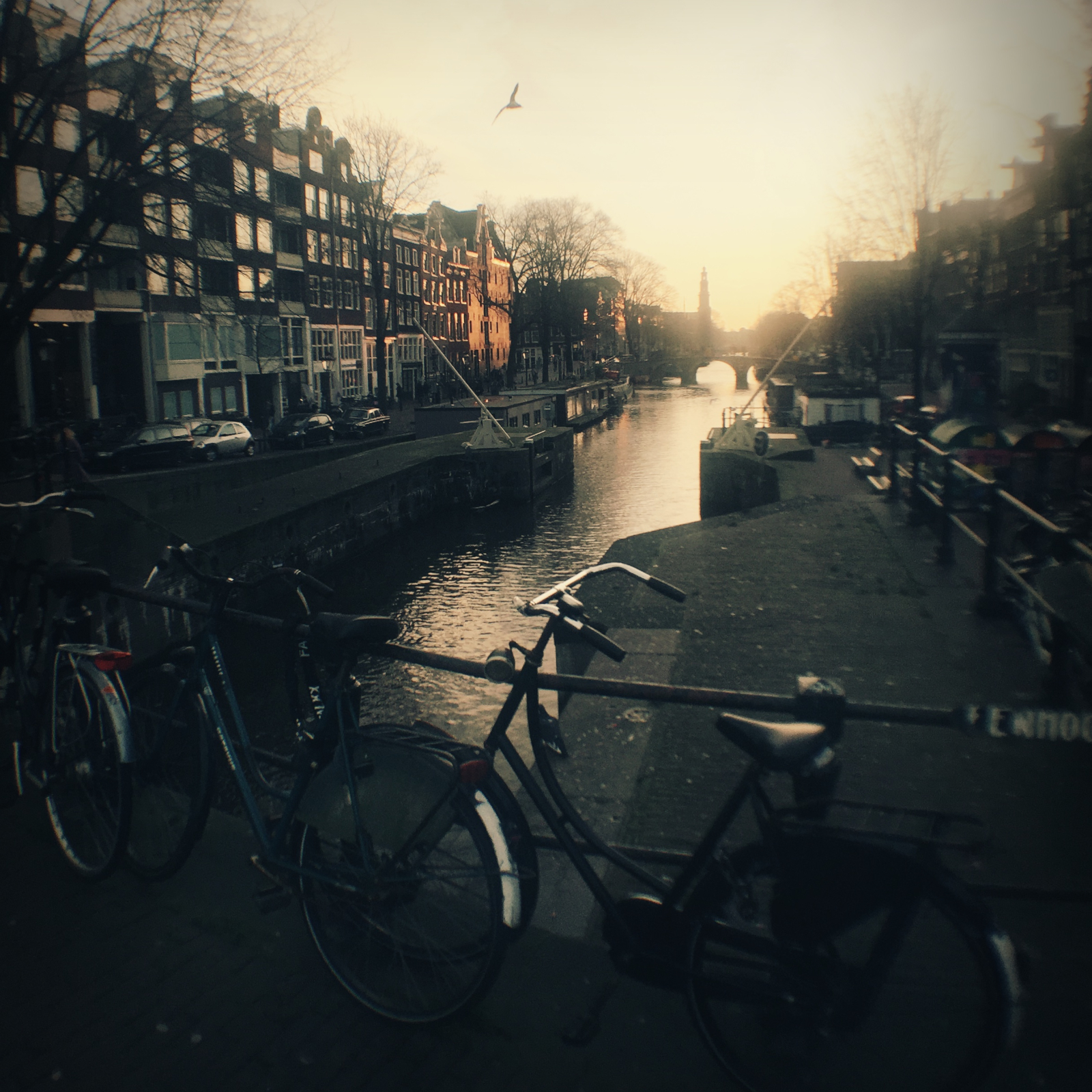Evening on Prinsengracht canal.