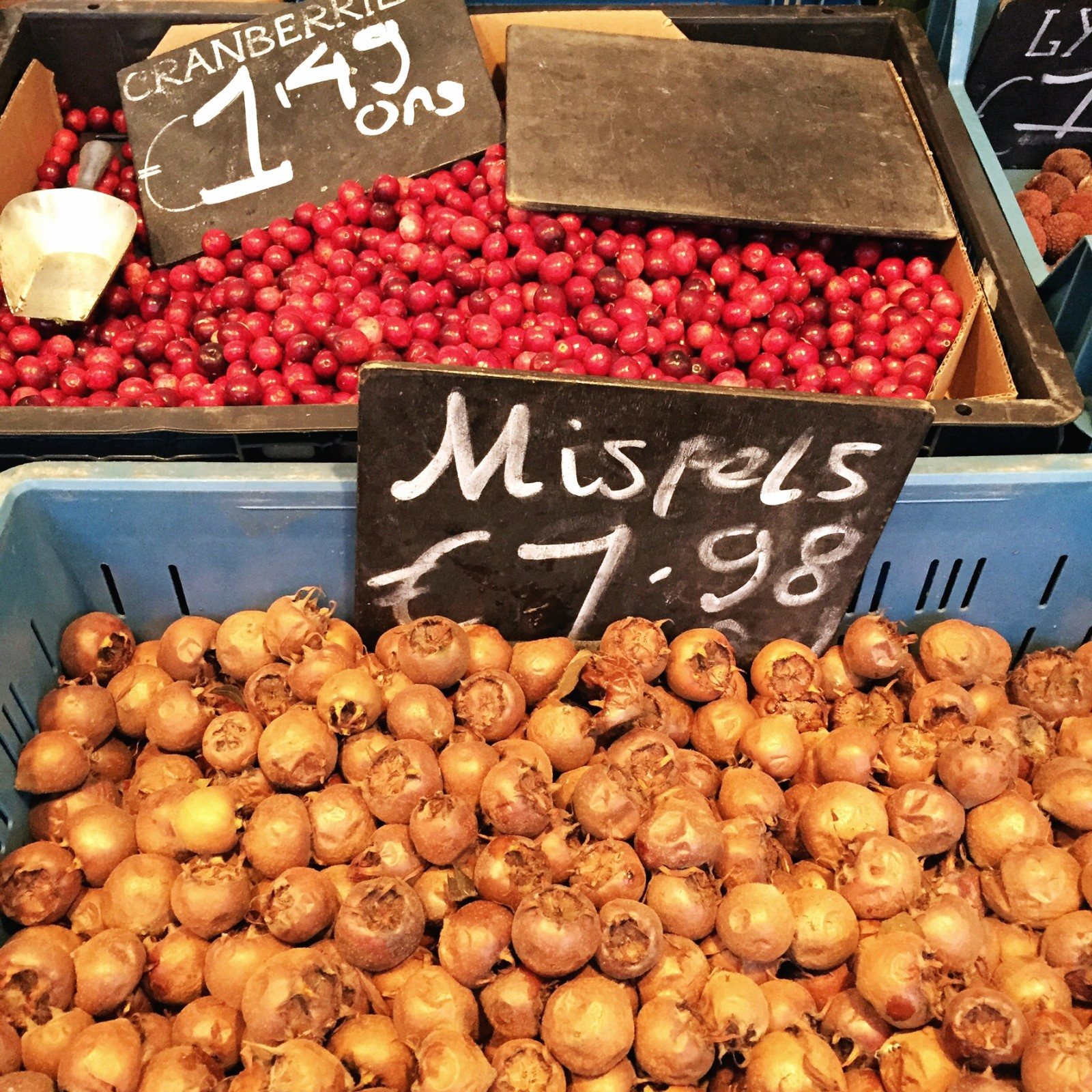 Medlars for sale! Wow! We grow them but almost no one has heard of them here.
