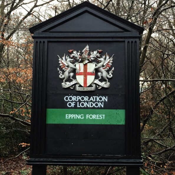 Not much else to say except: HOLY FUCK I WAS IN THE EPPING FOREST!!!!!