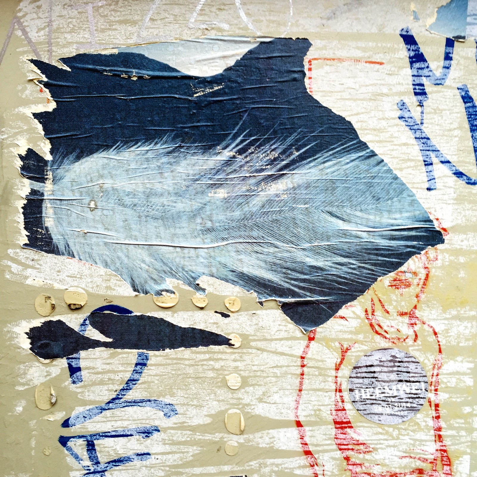 Paris_Street Art Paste Stencil Feather