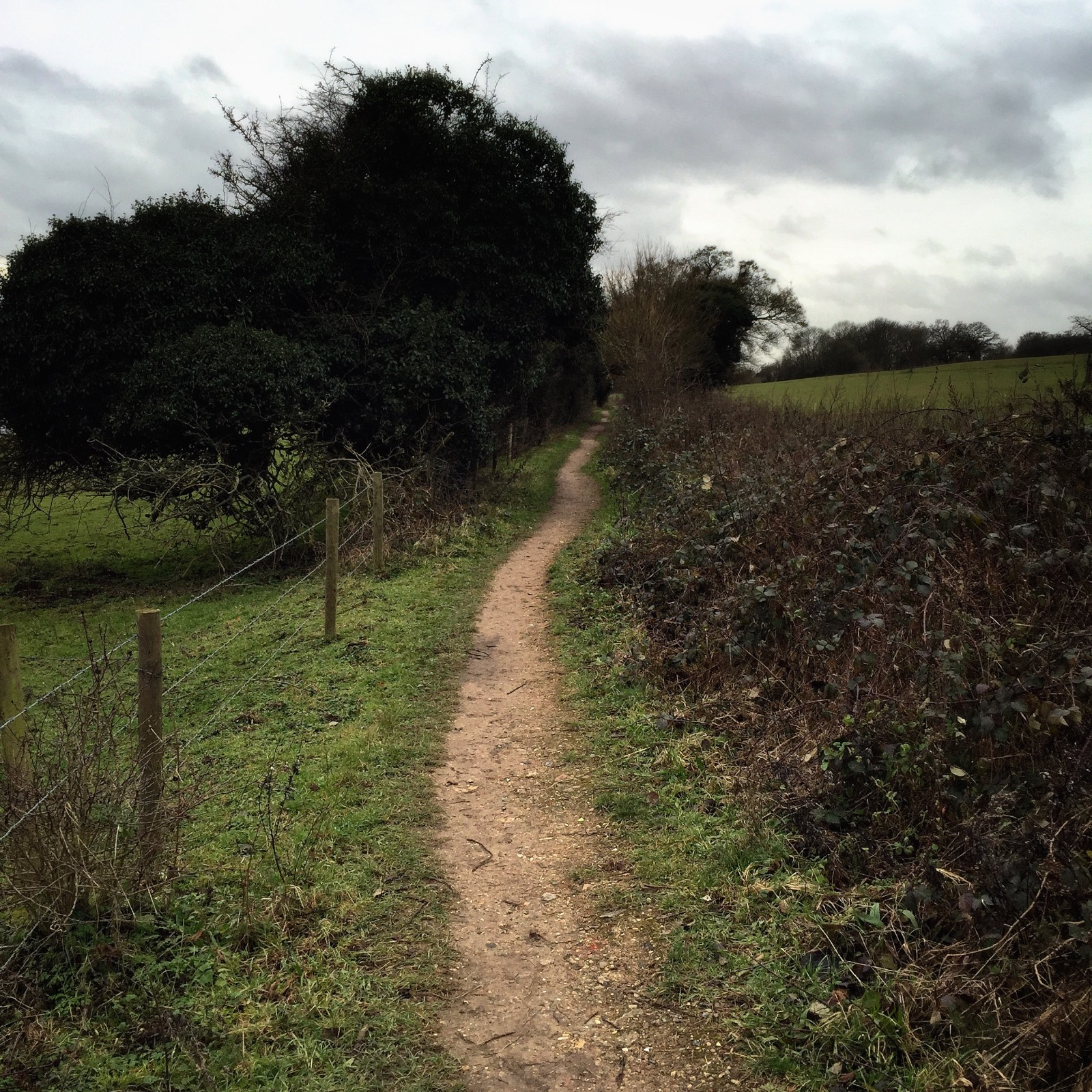 Hertford Walking Path