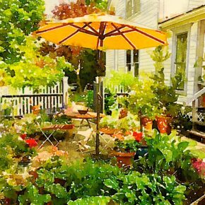 Garden in Watercolor