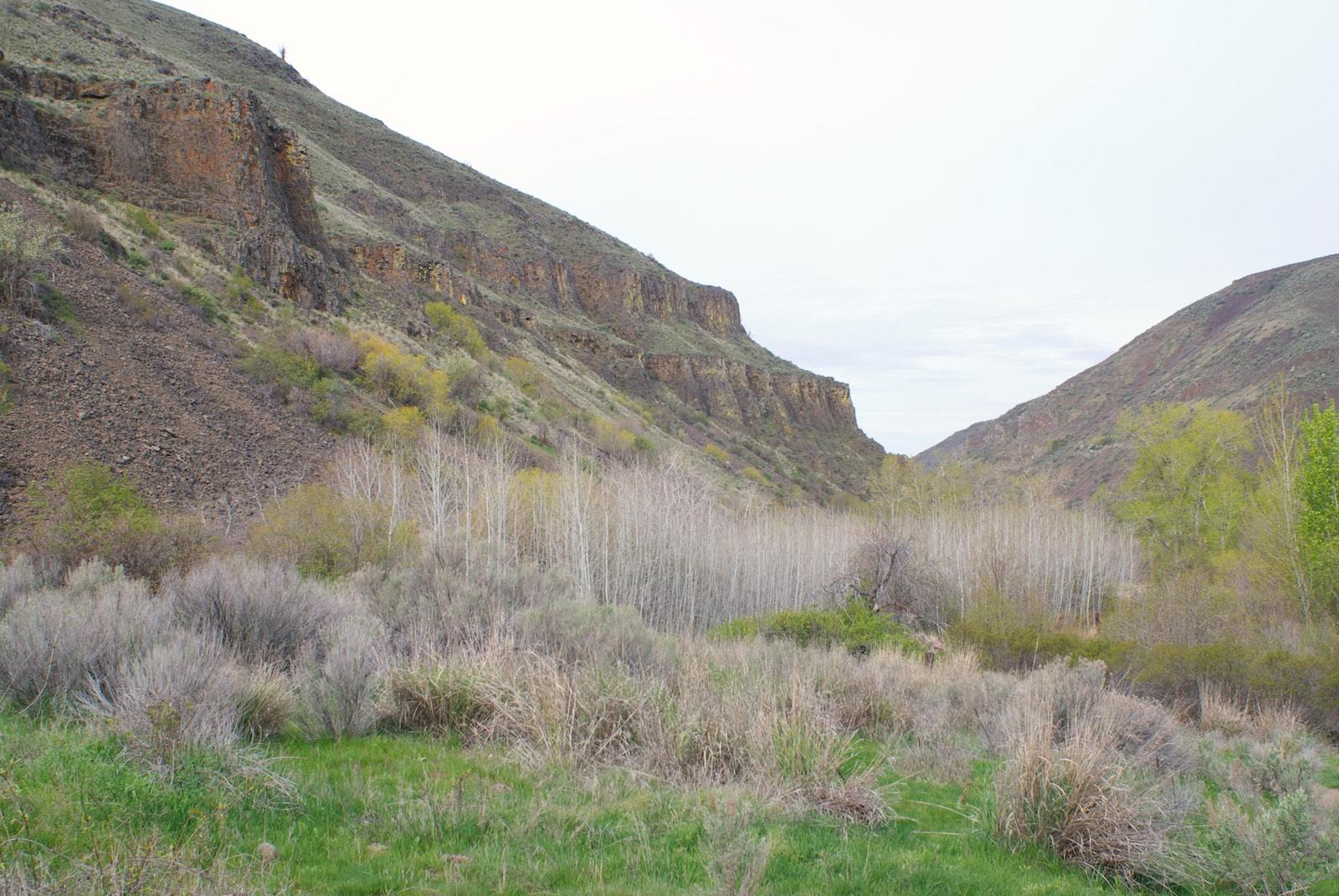 Yakima Canyon Umatanum Canyon Trail
